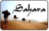 Sahara Phone Cards